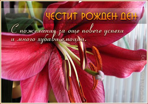 Поздравления по сербски